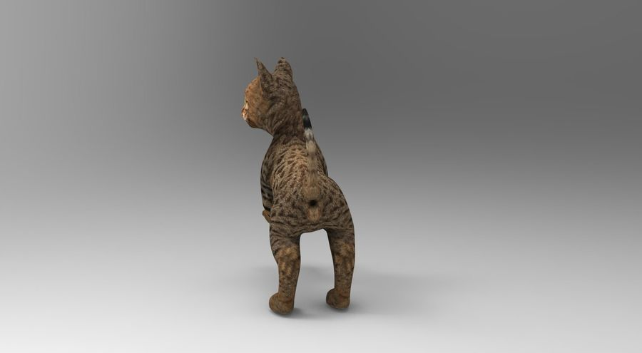 cute cat rigged royalty-free 3d model - Preview no. 23