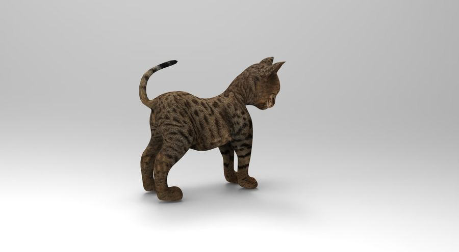 cute cat rigged royalty-free 3d model - Preview no. 16