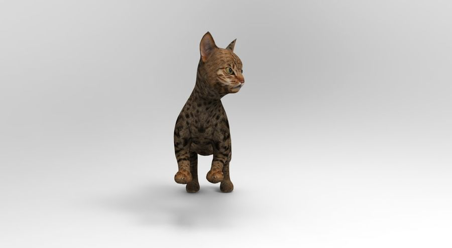 cute cat rigged royalty-free 3d model - Preview no. 26