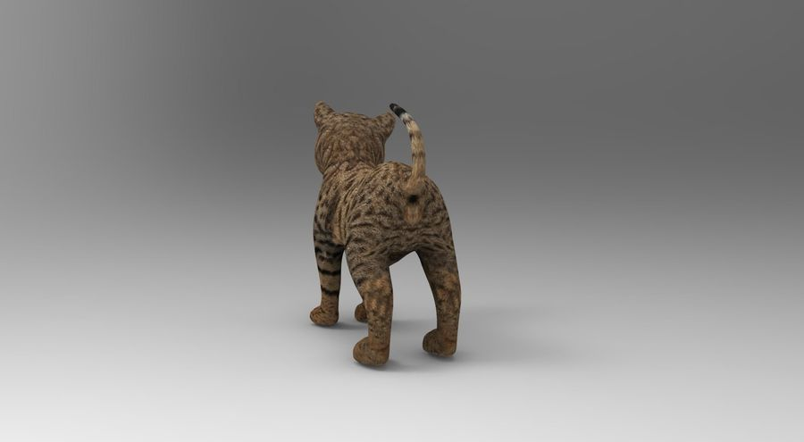 cute cat rigged royalty-free 3d model - Preview no. 17