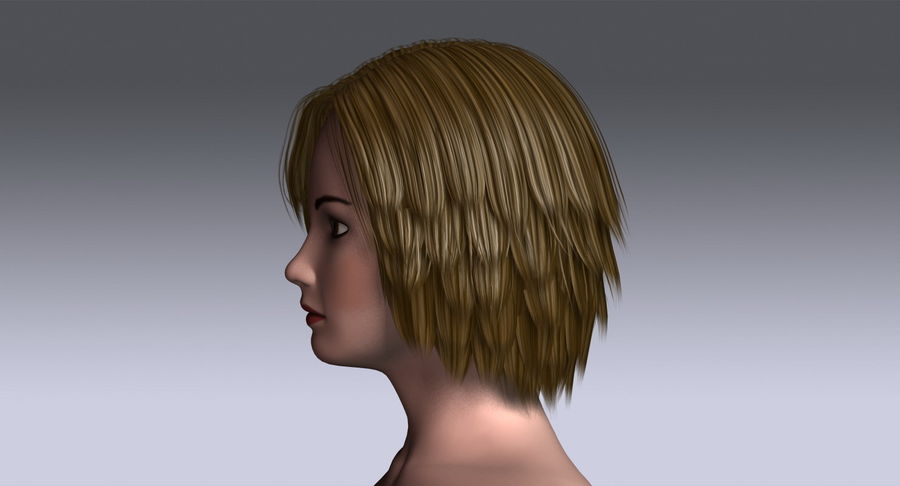 Hairstyle 2 3d Model 19 X Obj 3ds Free3d