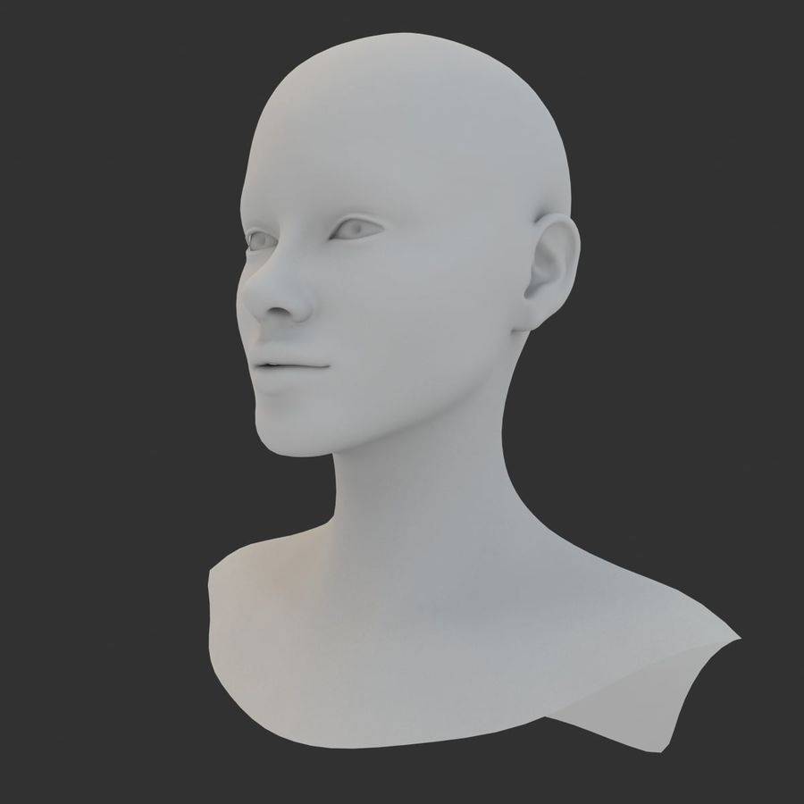 Female Head Base Mesh 3D model royalty-free 3d model - Preview no. 6