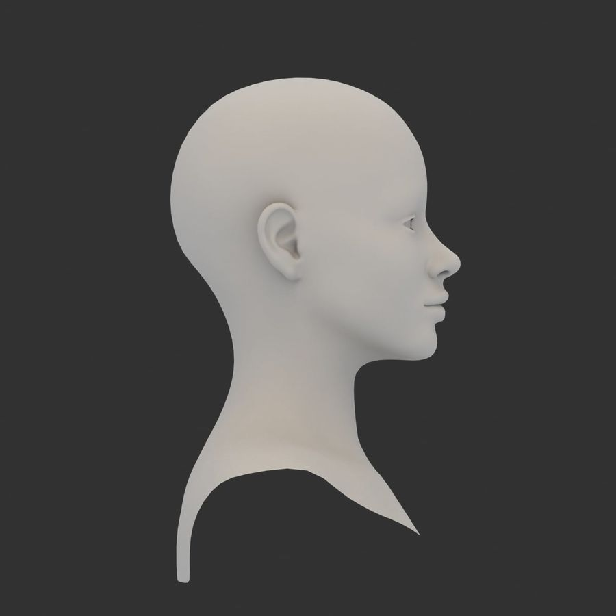 Female Head Base Mesh 3D model royalty-free 3d model - Preview no. 4