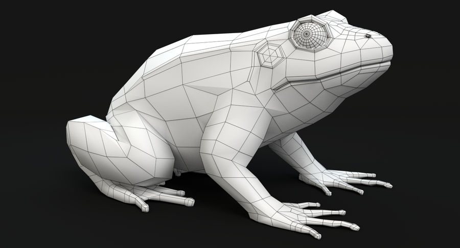 Frog royalty-free 3d model - Preview no. 11