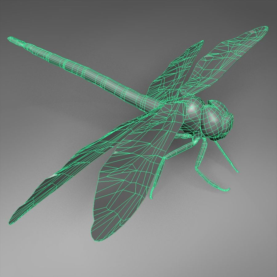 Dragon Fly royalty-free 3d model - Preview no. 4