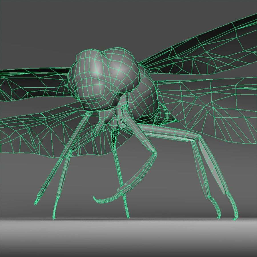 Dragon Fly royalty-free 3d model - Preview no. 12
