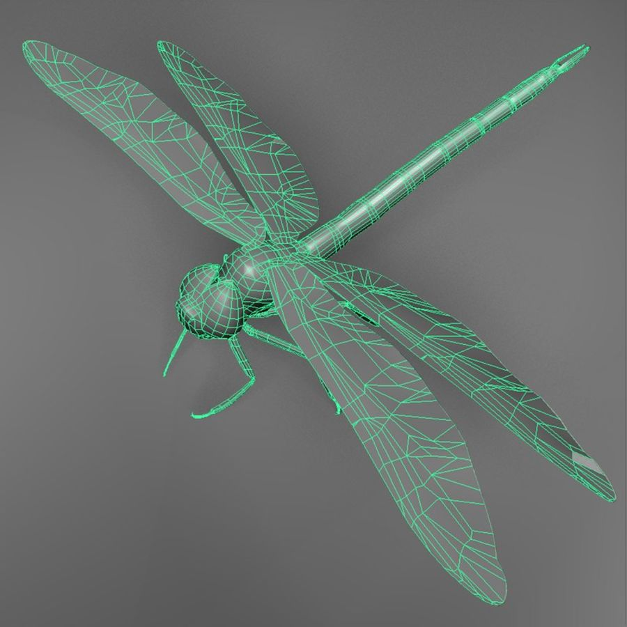 Dragon Fly royalty-free 3d model - Preview no. 6