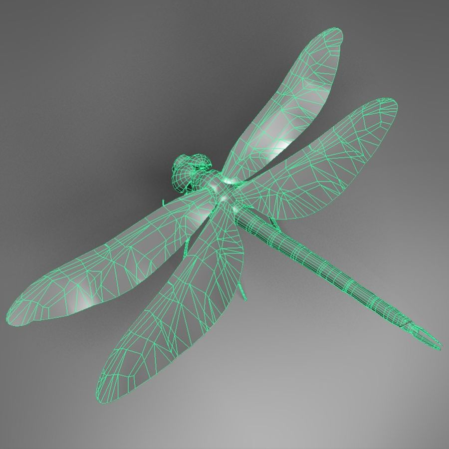 Dragon Fly royalty-free 3d model - Preview no. 8
