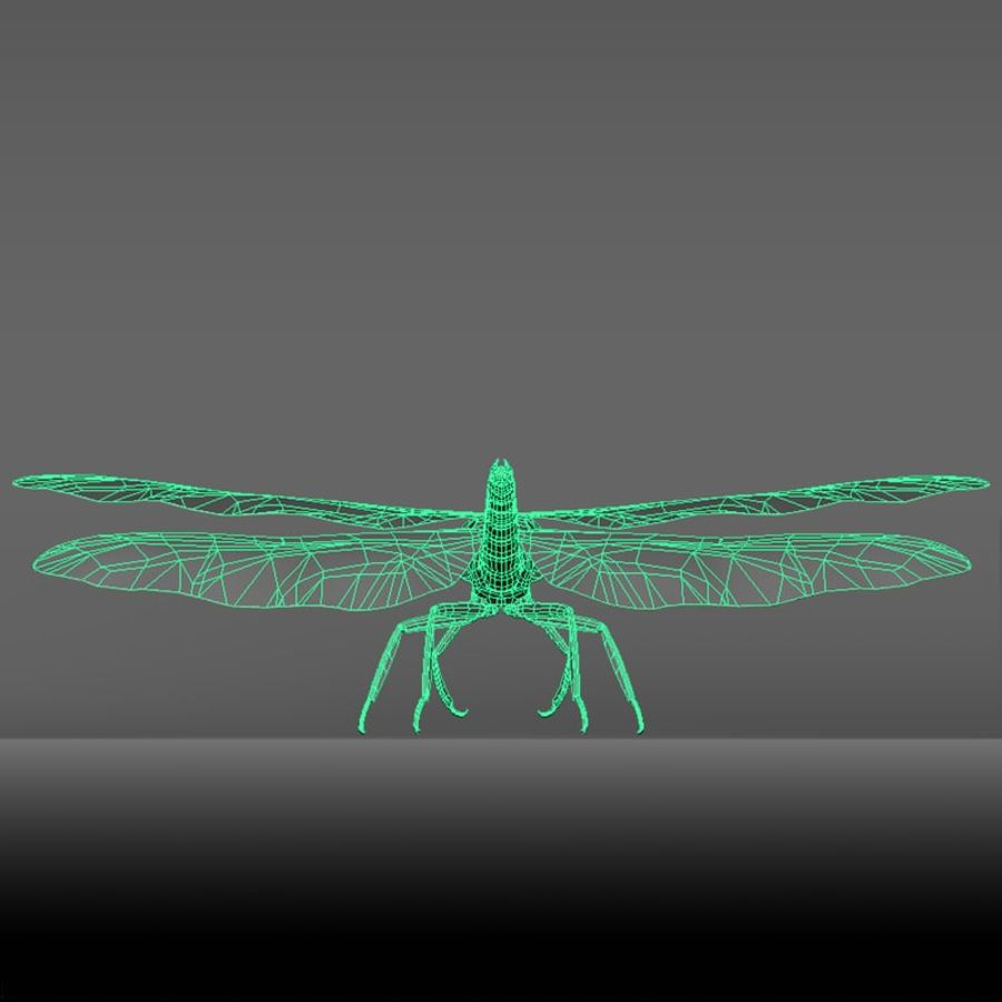 Dragon Fly royalty-free 3d model - Preview no. 22