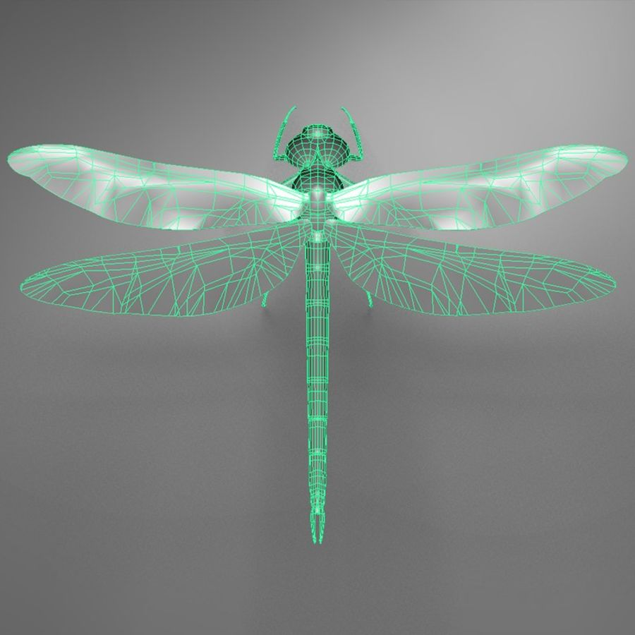 Dragon Fly royalty-free 3d model - Preview no. 18