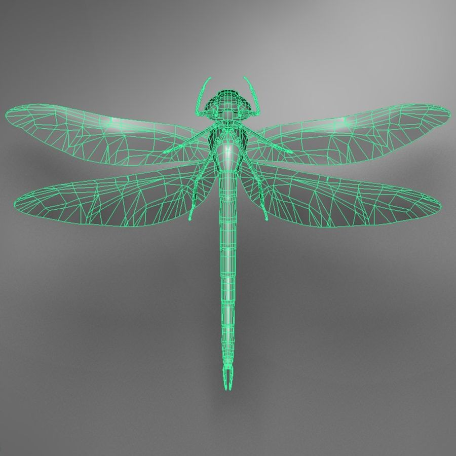 Dragon Fly royalty-free 3d model - Preview no. 20