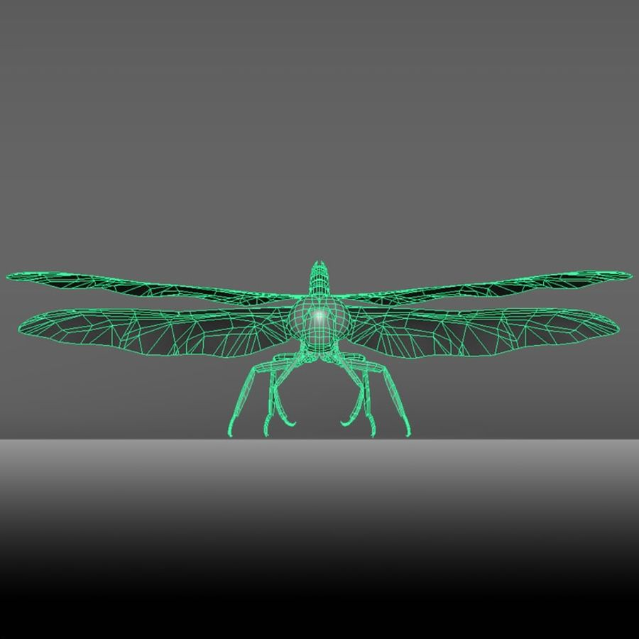 Dragon Fly royalty-free 3d model - Preview no. 16