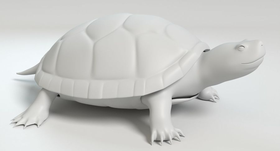 Turtle royalty-free 3d model - Preview no. 10