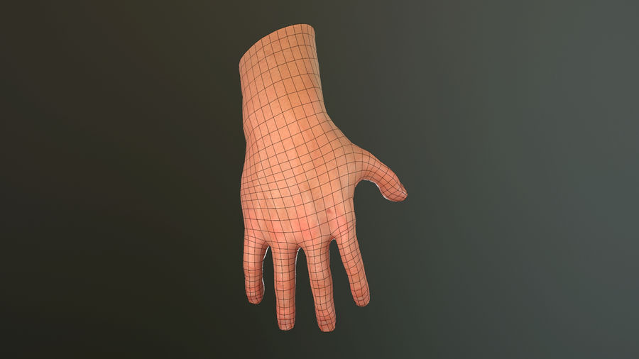 Hand Rigged (male) royalty-free 3d model - Preview no. 32