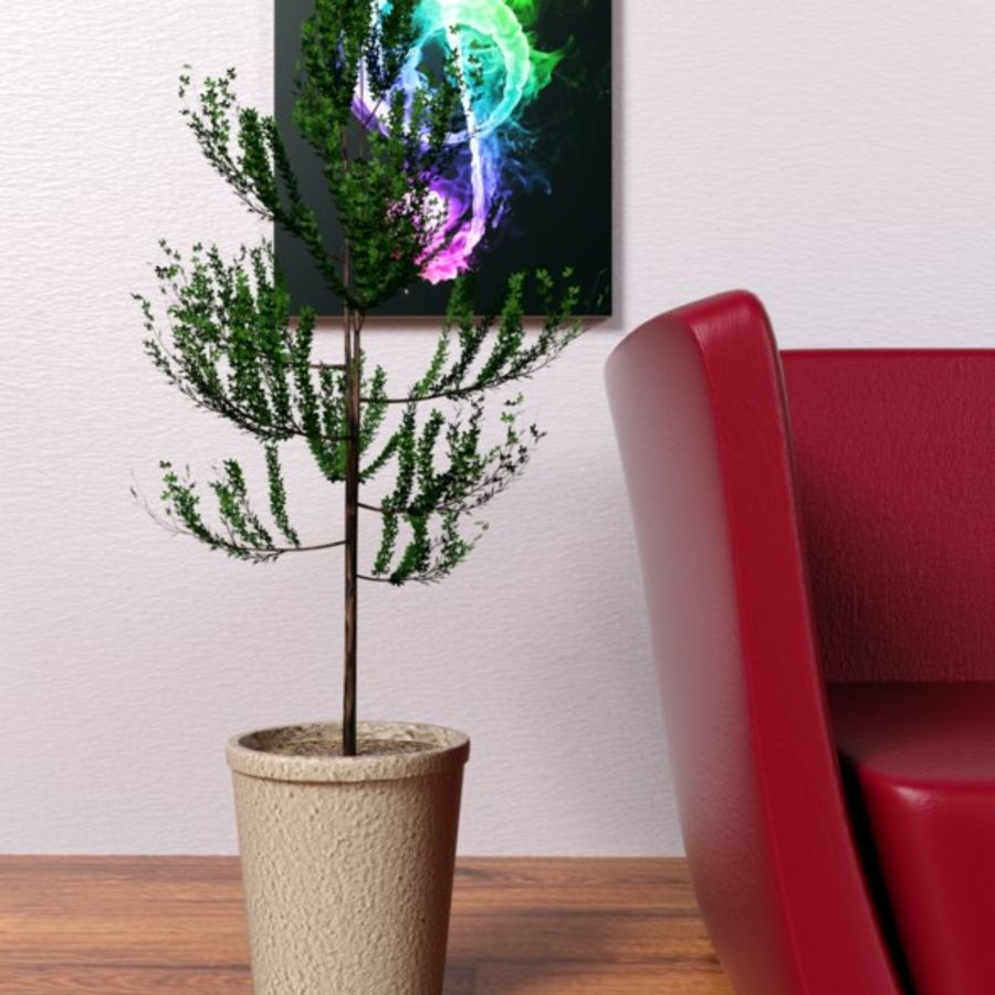 Petit arbre / plante avec pot royalty-free 3d model - Preview no. 4