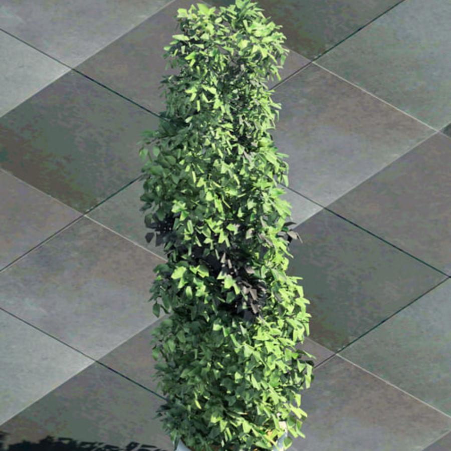 4 Tree type For Revit 3D Model $29 -  rfa - Free3D