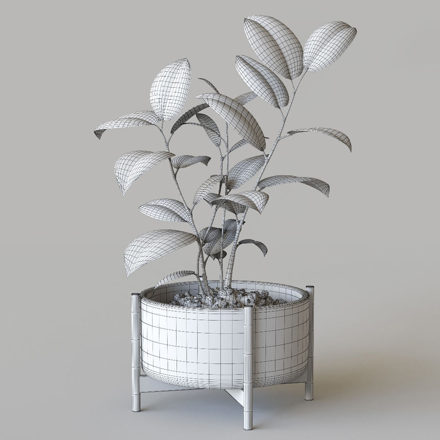 화분 식물 royalty-free 3d model - Preview no. 6