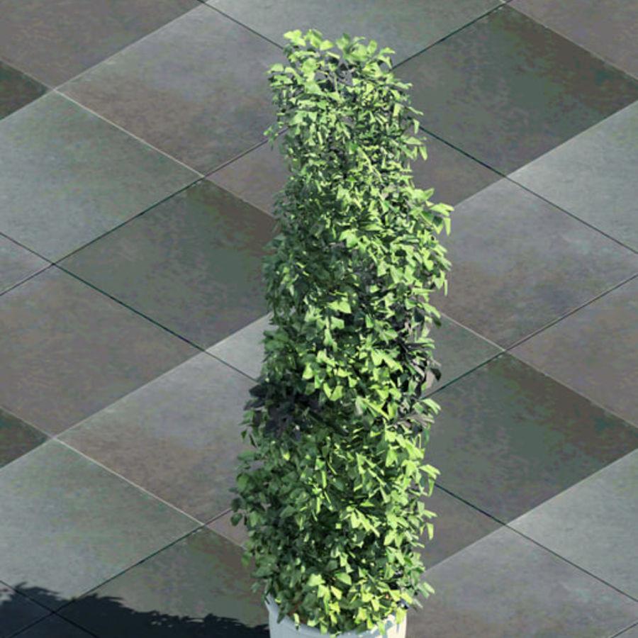 Tree For Revit 3D Model $12 -  unknown  rfa - Free3D