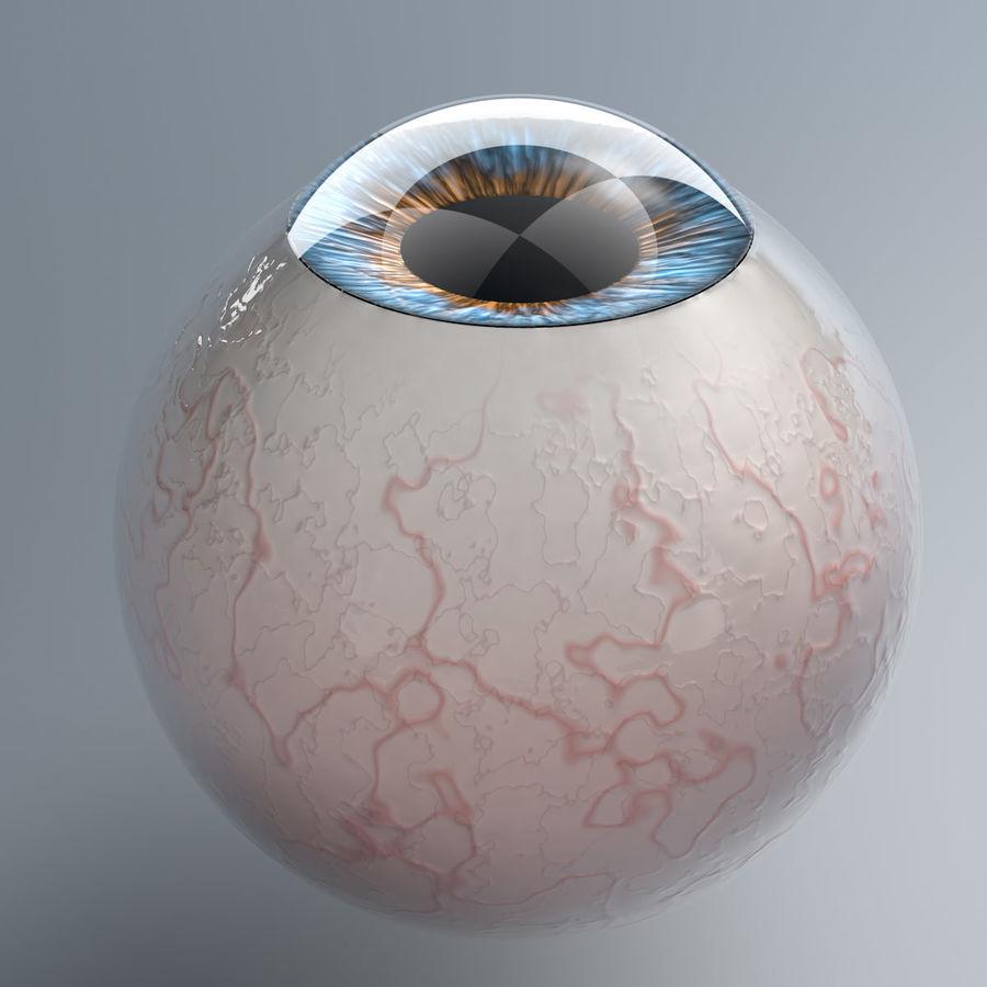 Realist İnsan Gözü - Teçhizatlı royalty-free 3d model - Preview no. 2