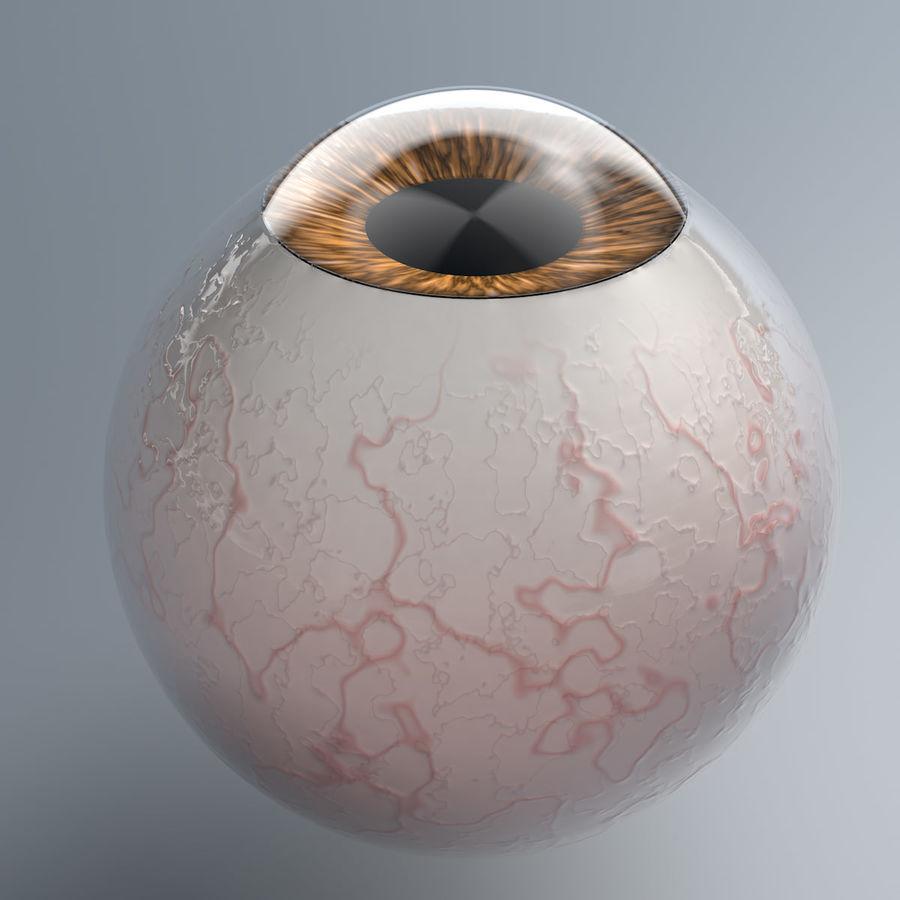 Realist İnsan Gözü - Teçhizatlı royalty-free 3d model - Preview no. 3