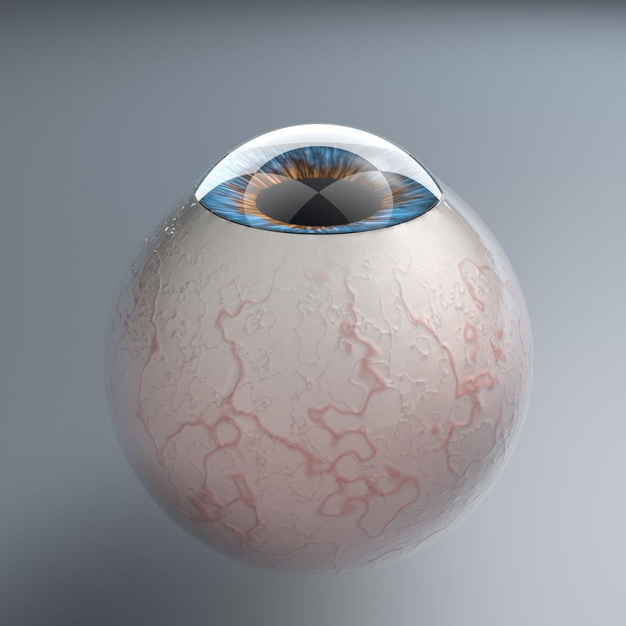 Realist İnsan Gözü - Teçhizatlı royalty-free 3d model - Preview no. 17
