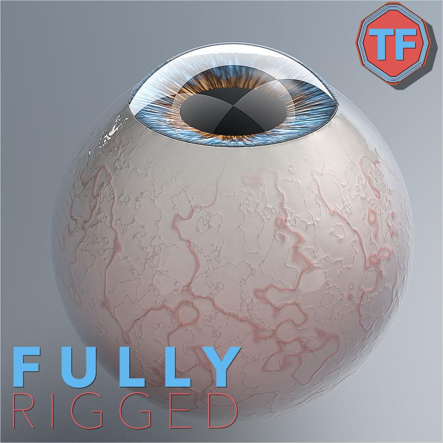 Realist İnsan Gözü - Teçhizatlı royalty-free 3d model - Preview no. 1
