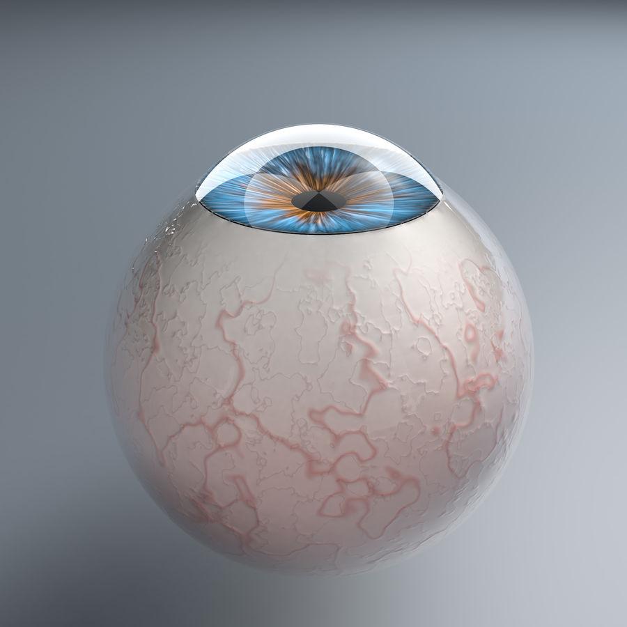 Realist İnsan Gözü - Teçhizatlı royalty-free 3d model - Preview no. 18