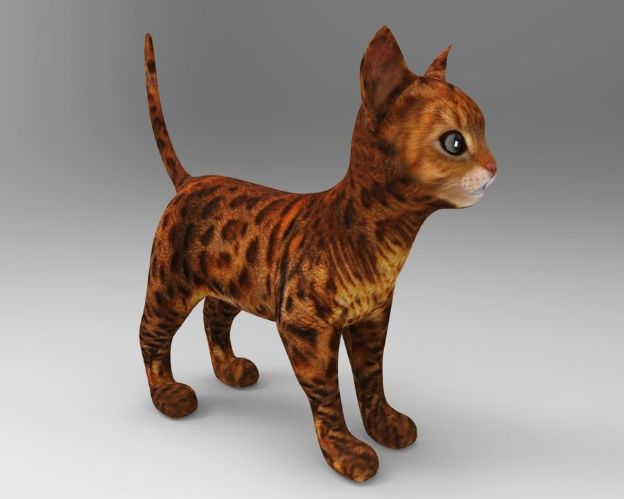 cute cat model royalty-free 3d model - Preview no. 4