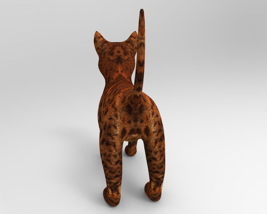 cute cat model royalty-free 3d model - Preview no. 9