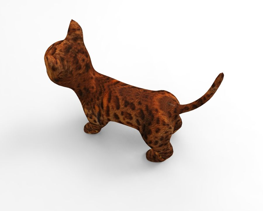 cute cat model royalty-free 3d model - Preview no. 10