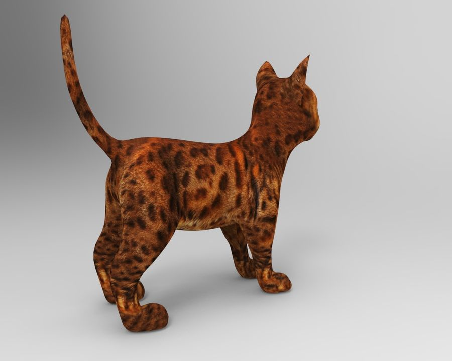 cute cat model royalty-free 3d model - Preview no. 7