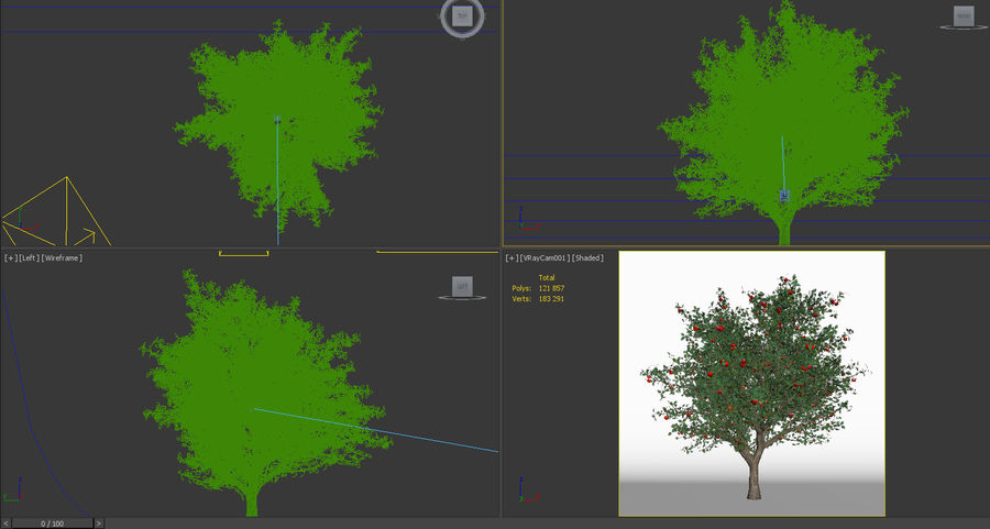 apple tree 5.5 mrter malus domestica royalty-free 3d model - Preview no. 6