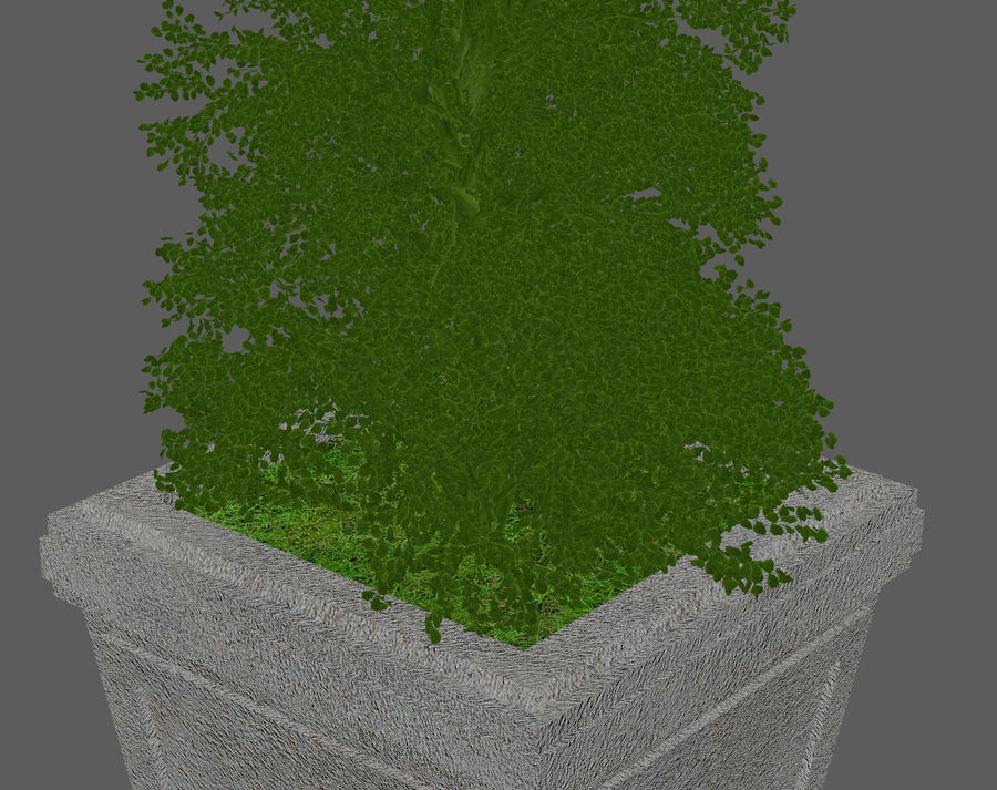 Plant Pot royalty-free 3d model - Preview no. 3