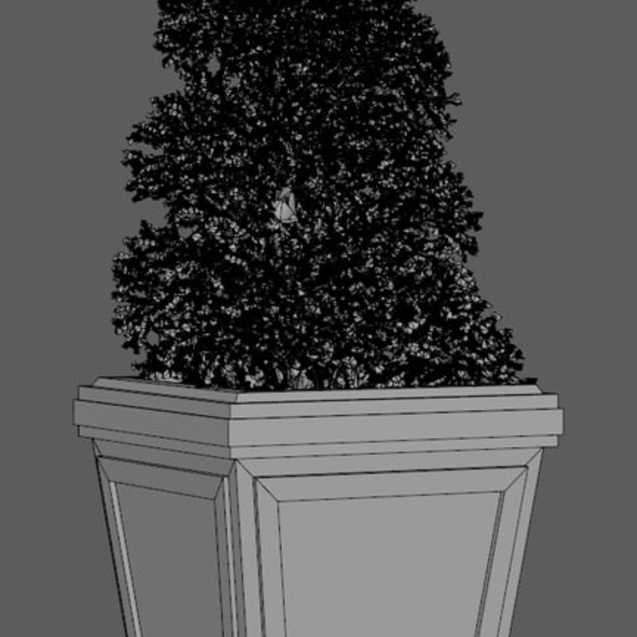 Plant Pot royalty-free 3d model - Preview no. 5