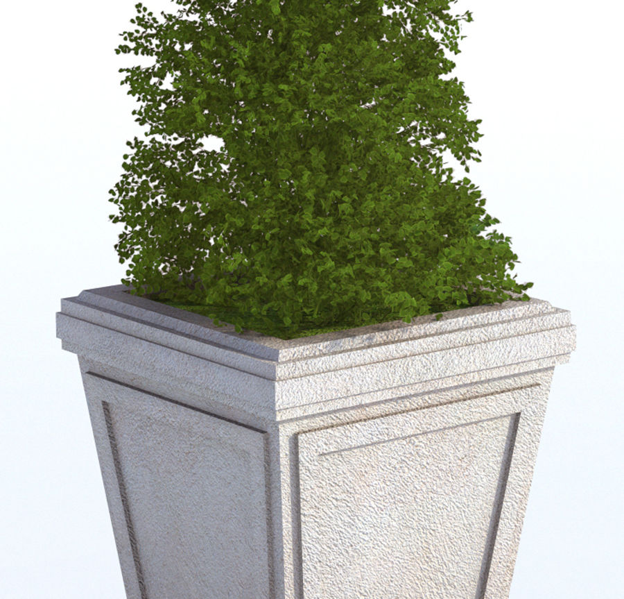 Plant Pot royalty-free 3d model - Preview no. 6
