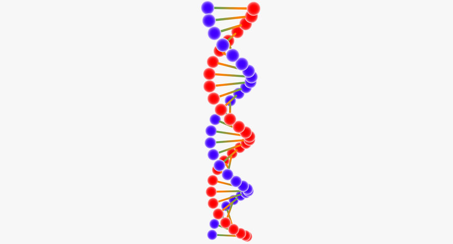 DNA royalty-free 3d model - Preview no. 7