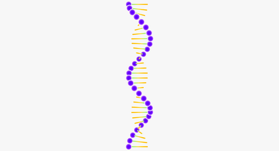DNA royalty-free 3d model - Preview no. 8