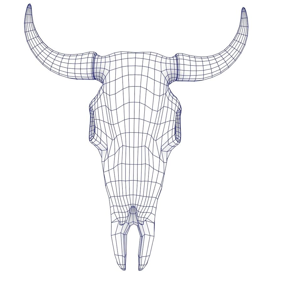 Cow skull royalty-free 3d model - Preview no. 4