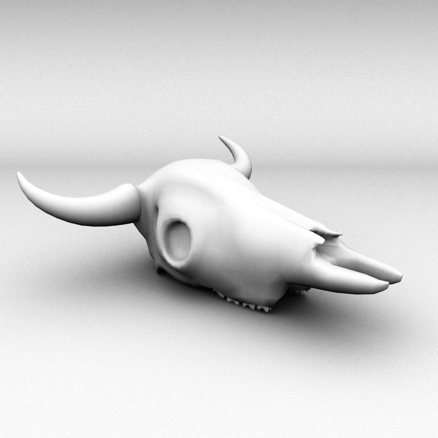 Cow skull royalty-free 3d model - Preview no. 8