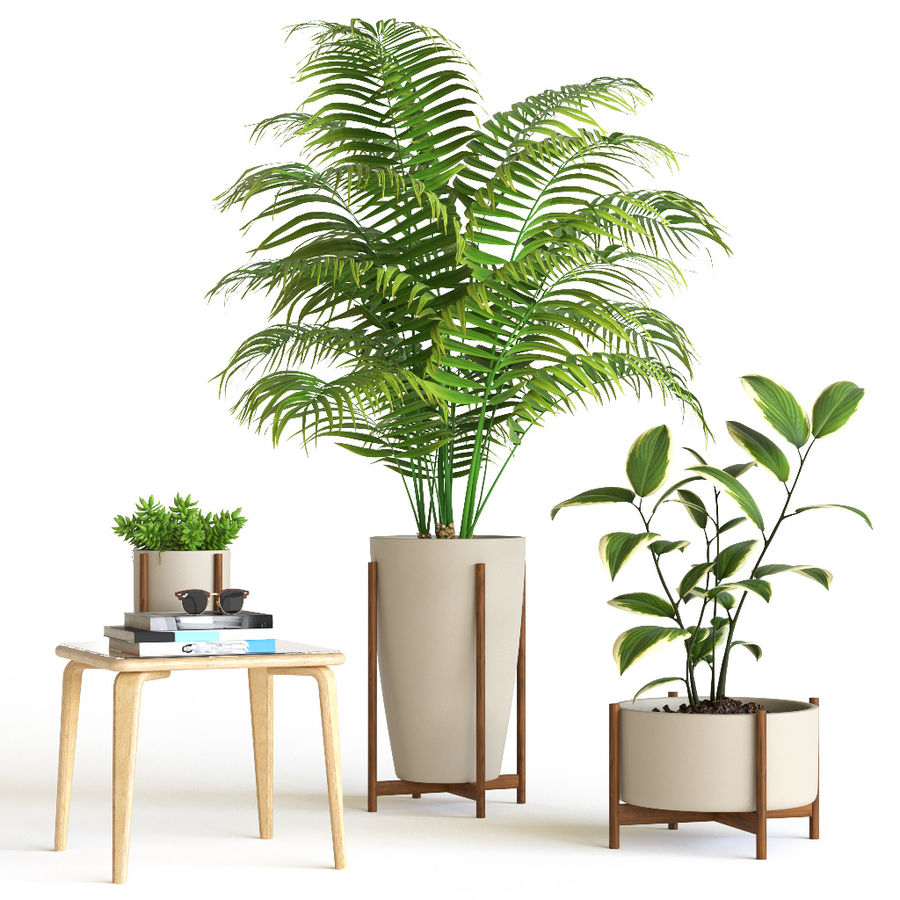Plant set royalty-free 3d model - Preview no. 1