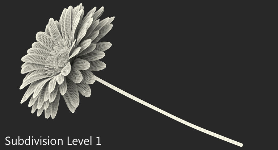 Red Gerbera Flower royalty-free 3d model - Preview no. 8