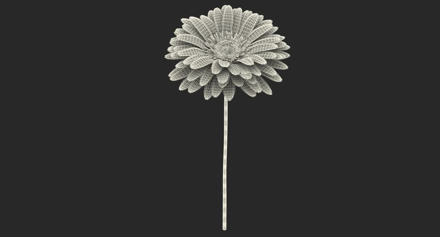 Red Gerbera Flower royalty-free 3d model - Preview no. 14