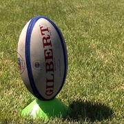 RugbyFlat_c4d modelo 3d