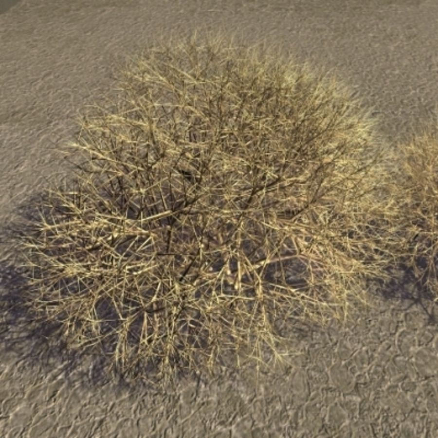 V01Tumbleweeds.zip royalty-free 3d model - Preview no. 1