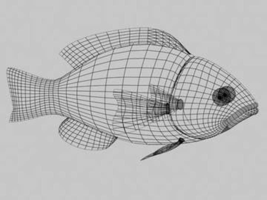 золотая рыбка royalty-free 3d model - Preview no. 2