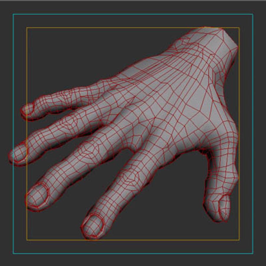 menselijke hand royalty-free 3d model - Preview no. 10