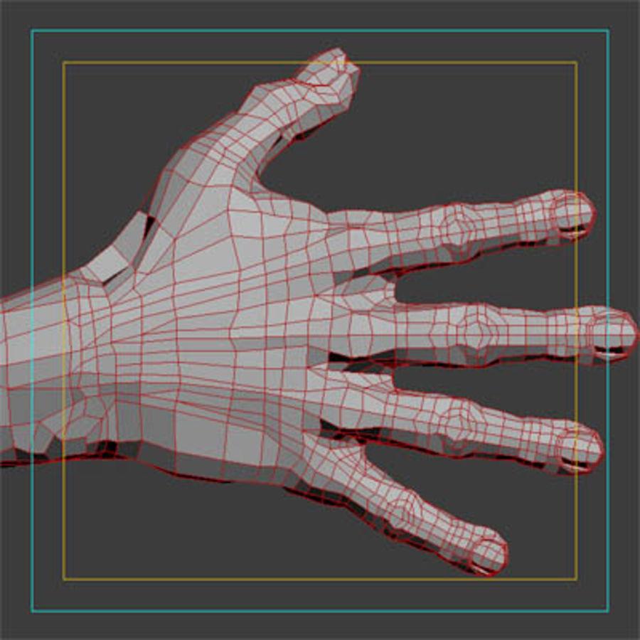 menselijke hand royalty-free 3d model - Preview no. 7