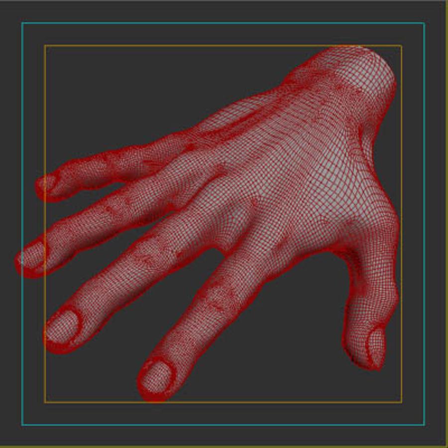 menselijke hand royalty-free 3d model - Preview no. 12