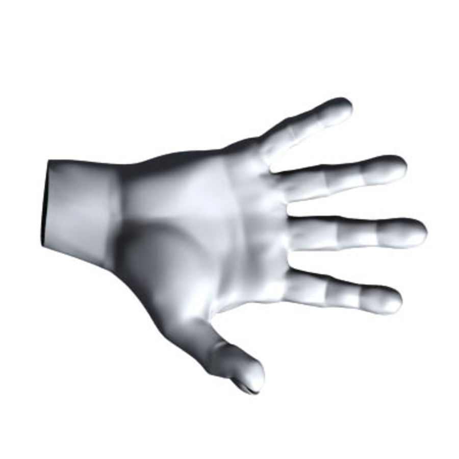 menselijke hand royalty-free 3d model - Preview no. 3