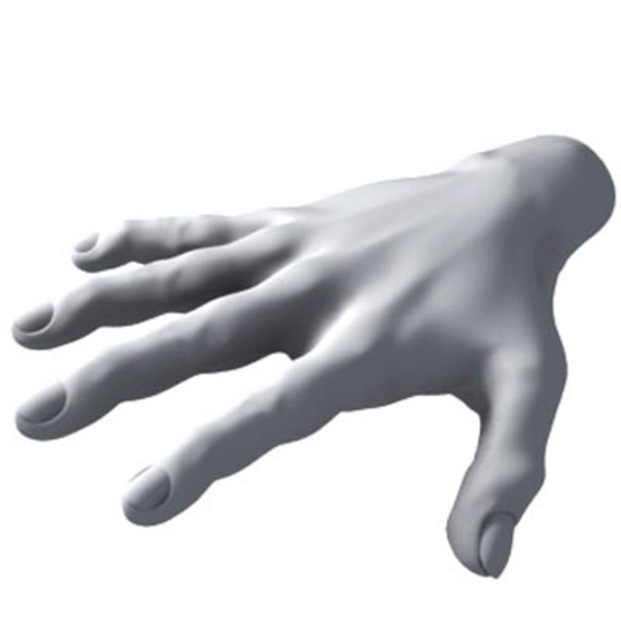 menselijke hand royalty-free 3d model - Preview no. 1